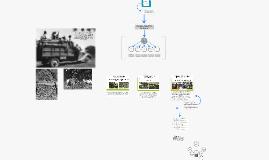 Copy of Copy of Copy of Programa Nacional de Acridios