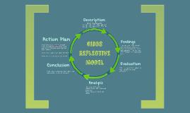 Gibbs Reflective Model
