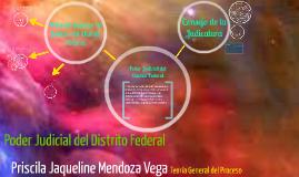Copy of Poder Judicial del Distrito Federal
