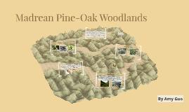 Madrean Pine-Oak Woodlands