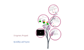 Enzymes Project