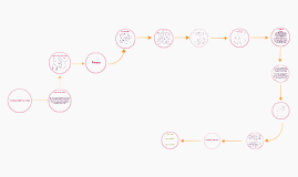 Copy of Planeación y Desarrollo de nuevos productos