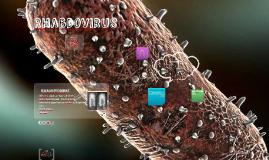 Rhabdovirus