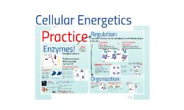 Copy of AP Bio- Energy 3:  Cellular Energetic Practice
