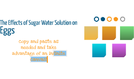 The Effects of Sugar Water Solution on