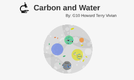 Carbon and water