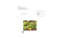 Urban Farm and Urban Garden Watering Instructions