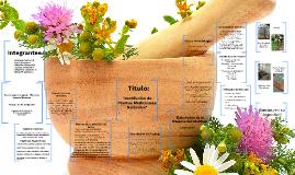 Destilación de plantas medicinales