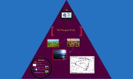Copy of Copy of The Triangular Trade