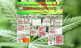 Therapeutic Opportunities of Exocannabinoids