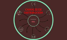 FACTORES QUE INFLUYEN EN LA ELECCION DE CANALES