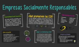 4.8.2 Empresas Socialmente Responsables