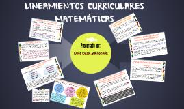 LINEAMIENTOS CURRICULARES MATEMÁTICAS