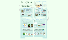 33) AP Bio- Ecology- Ecosystems