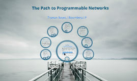 The Path to Programmable Networks
