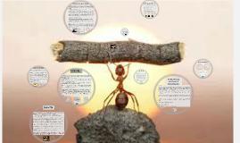 Copy of HABILIDADES SOCIALES Y PERSONALES.