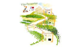 La Red de Vías Pecuarias y su función dinamizadora económico-social del territorio