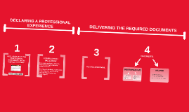 Procedure of the declaration of a professional experience