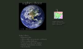 William Styron's Sophies Choice