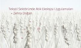 Copy of TEKSTİL SEKTÖRÜNDE ATIK EKOLOJİSİ UYGULAMALARI
