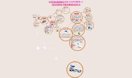 Copy of ESTANDARES DE CONTROL Y GESTION INFORMATICA