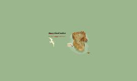 Maury Island Incident