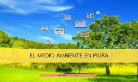 EL MEDIO AMBIENTE EN LA COMUNIDAD