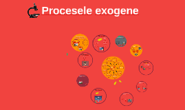 Copy of Procesele exogene