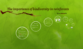 The importance of biodiversity in rainforests