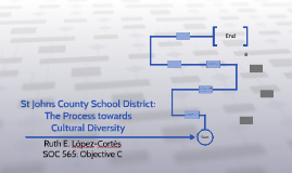 The Process towards Cultural Diversity