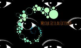 Motor Ocular Externo