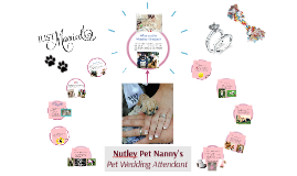 What is a Pet Wedding Attendant?