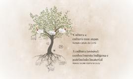 A cultura invisível: conhecimentoindígena e patrimônio imat