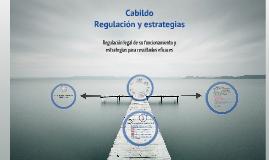 Copy of Cabildo. Regulación legal y estrategias
