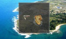 Copy of Apa Marau Plano de Manejo