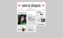 sauver les chimpanzés