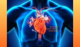 Reumatska groznica i stecene srcane mane