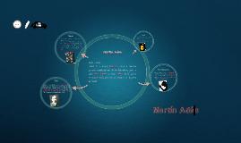 Copy of Martin Adan