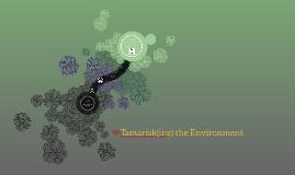 Tamarisk(ing) the Environment