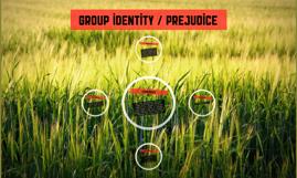 Group identity / prejudice