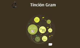 Tinción Gram