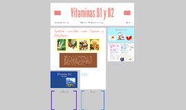 Copy of Vitaminas B1 y B2