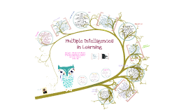 multiple intelligences in learning