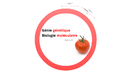 210-A06-HY : Biologie moléculaire et génie génétique