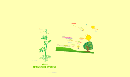 XX Transport System - Plants