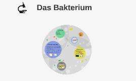 Das Bakterium