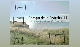 Campo de la Práctica III