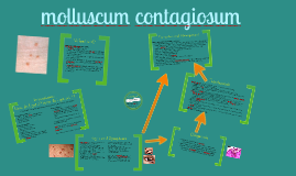 Copy of molluscum contagiosum