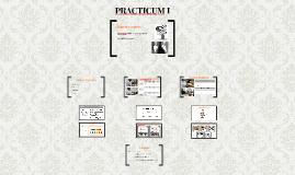 PRACTICUM I