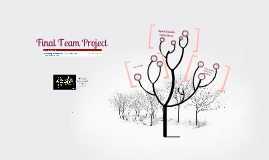 FINAL TEAM Caballo_Negro PROJECT